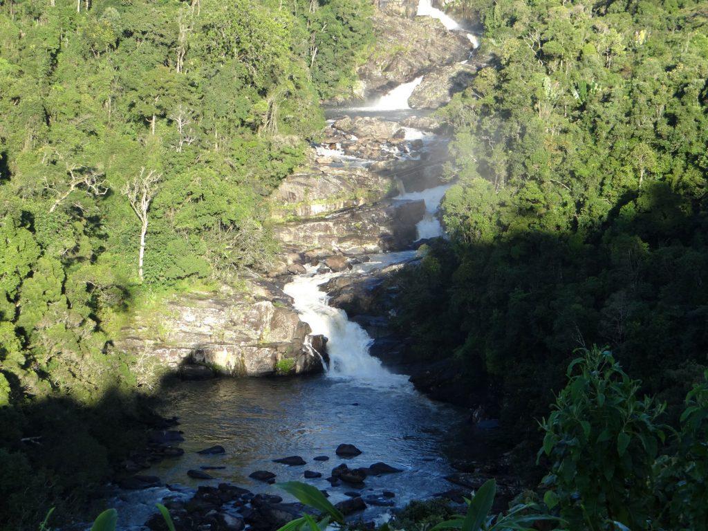 Ranomafana National Park.gallery_image.4